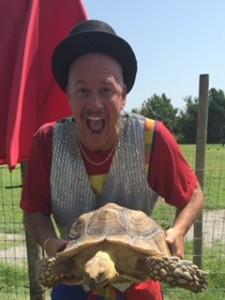 magic turtle 2